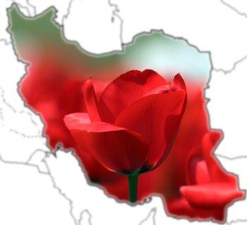 Iran-Blume