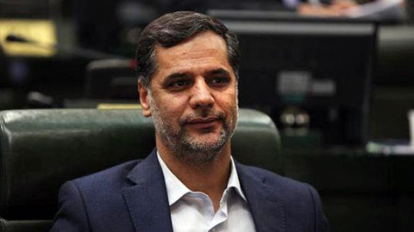 Seyed Hossein Naqavi Hosseini