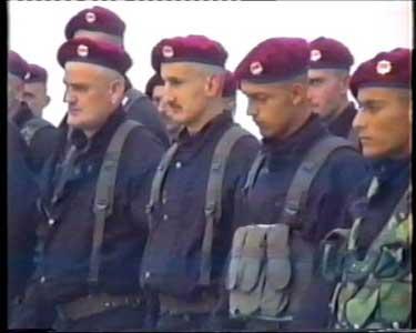 Ein Haager Märchen für besonders naive Menschen. Die militärische Einheit Skorpione soll nach dem Fall Srebrenicas sechs Männer verhaftet und über 100 Kilometer auf dem Landweg zur Erschiessung in die Umgebung von Trnovo gefahren haben