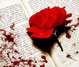 bloodyrose